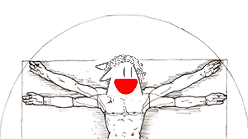 Coniglio Vitruviano